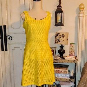 ColdWater Creek Eyelet Dress